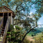 Las casas en los árboles más increíbles del mundo